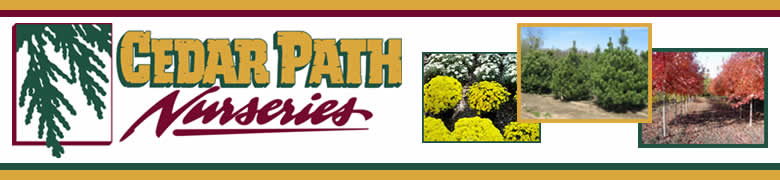 Cedar Path Nurseries LLC